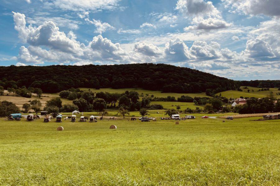 2h Treck-Pause: Bei längeren Touren von über 20 Kilometern eine Wohltat für Mensch und Pferd.